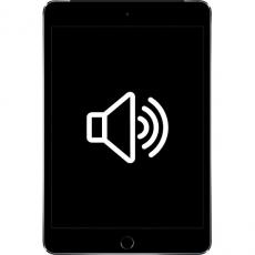 Замена динамика/микрофона iPad Mini 4, фото 1