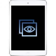 Замена стекла (Touchscreen) (оригинал) iPad Mini Retina, фото 1