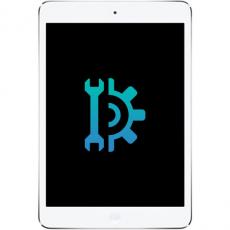 Замена Dock разъема (нижний шлейф) iPad Mini Retina, фото 1