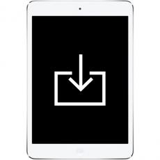 Работа с ПО iPad Mini Retina, фото 1