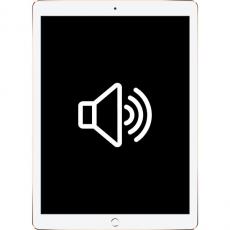 Замена динамика/микрофона iPad Pro, фото 1