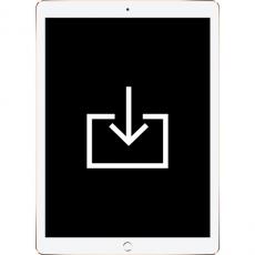 Работа с ПО iPad Pro, фото 1