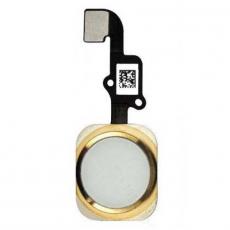 """Кнопка домой для iPhone 6/6 Plus, в сборе со шлейфом, оригинал, """"золотой"""", фото 1"""