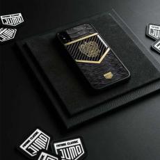 """Чехол Jumo Case для iPhone X карбон, рамка из латуни, натуральная кожа питона, никель с позолотой 24К, """"Герб РФ"""", фото 2"""