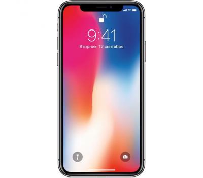 Apple iPhone X 256GB (серый космос), фото 1